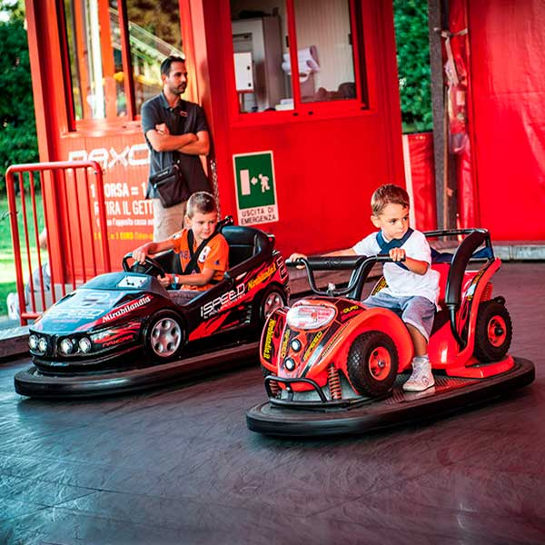 mini quad and mini sport bumper car