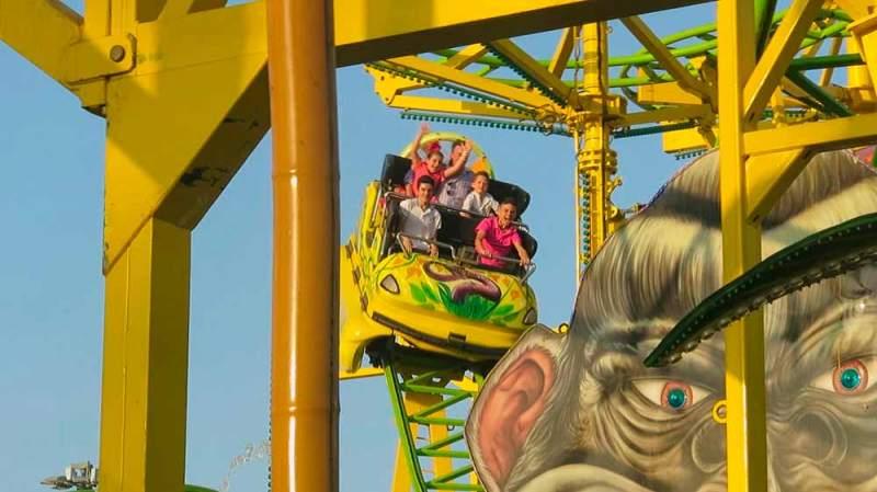 splah-coaster-4