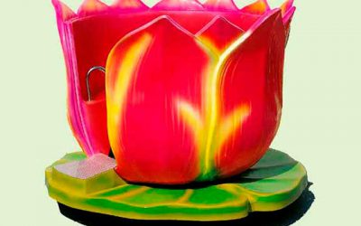 crazy-cup-flower-2