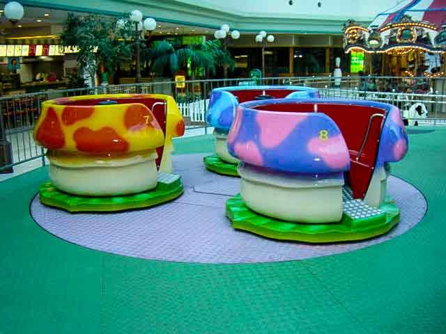 crazy-cup-mushroom